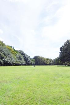 近所の砧公園_a0184348_16484933.jpg
