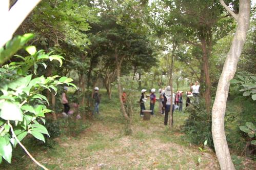 鳴滝小学校2年生40名遠足サポート in うみべの森_c0108460_17502620.jpg