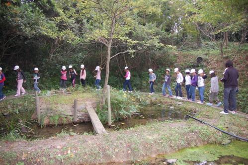 鳴滝小学校2年生40名遠足サポート in うみべの森_c0108460_17532025.jpg