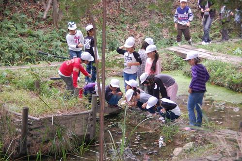 鳴滝小学校2年生40名遠足サポート in うみべの森_c0108460_17541665.jpg