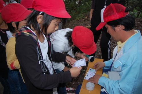 鳴滝小学校2年生40名遠足サポート in うみべの森_c0108460_17561449.jpg