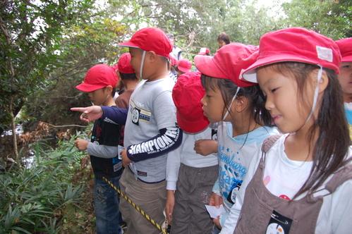 鳴滝小学校2年生40名遠足サポート in うみべの森_c0108460_17573419.jpg