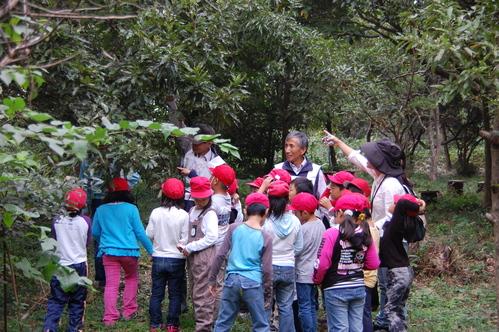 鳴滝小学校2年生40名遠足サポート in うみべの森_c0108460_1757445.jpg