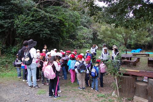 鳴滝小学校2年生40名遠足サポート in うみべの森_c0108460_1811245.jpg