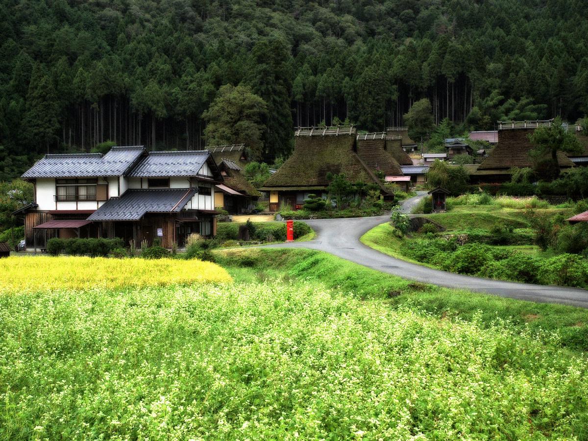 美山の里_f0021869_164591.jpg