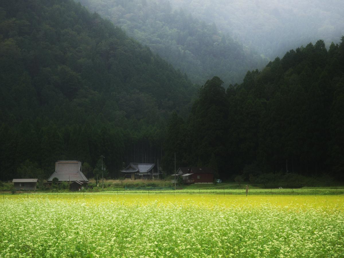 美山の里_f0021869_16888.jpg