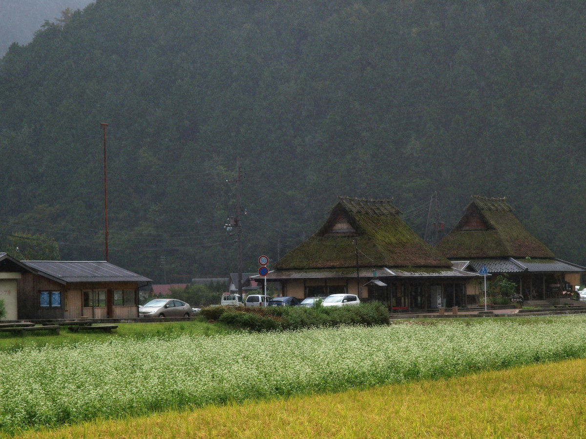 美山の里_f0021869_171713.jpg