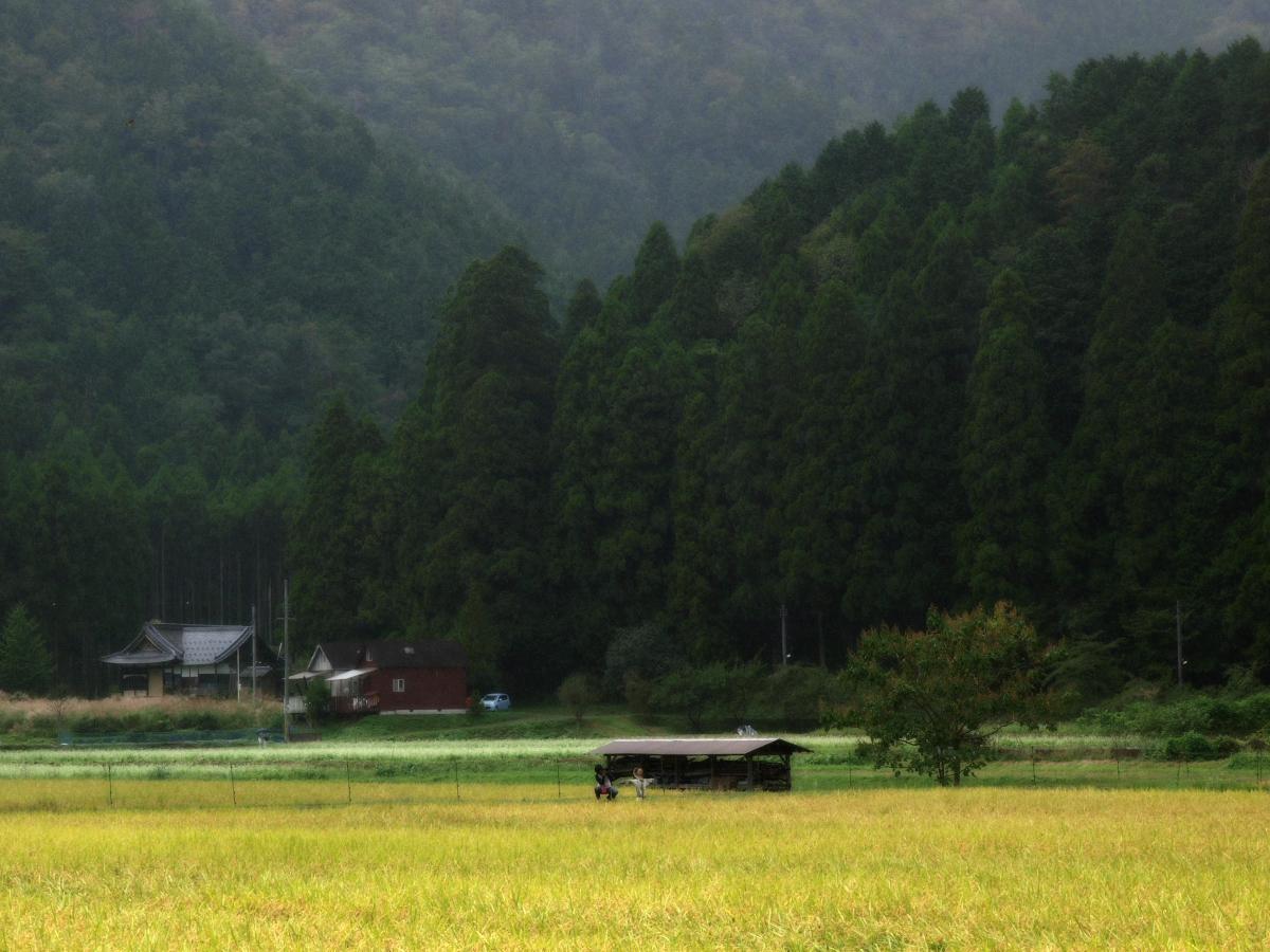 美山の里_f0021869_181391.jpg