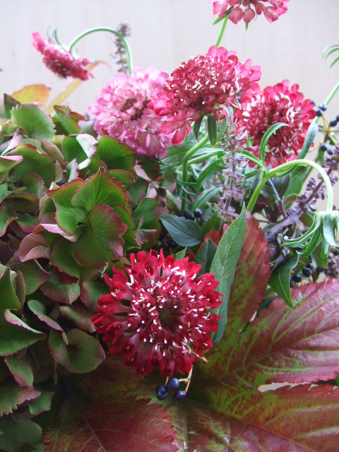 オークリーフ(赤い葉と花のアレンジメント)_f0049672_126496.jpg