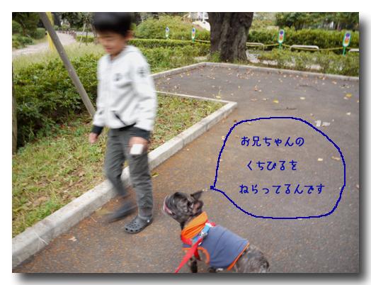 b0134197_2219124.jpg