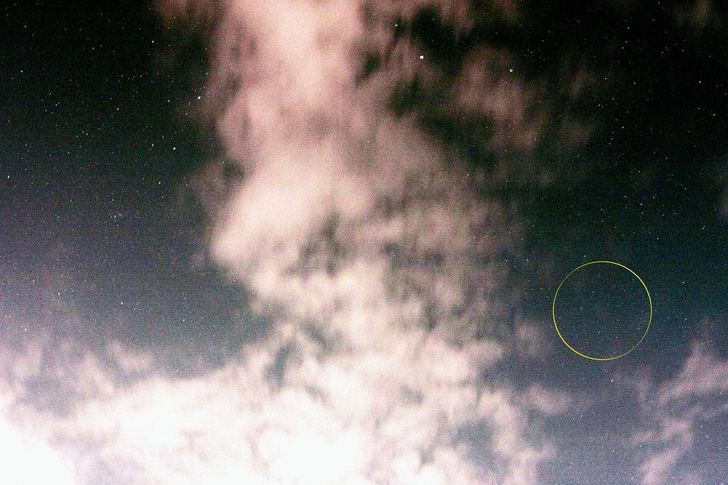 タテガミガンと雛/りゅう座流星群_b0024798_934168.jpg