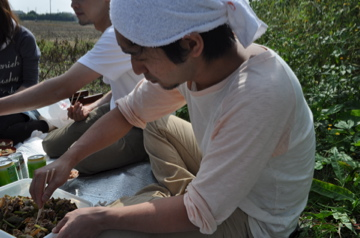 増田農園研修報告_c0130206_23245982.jpg