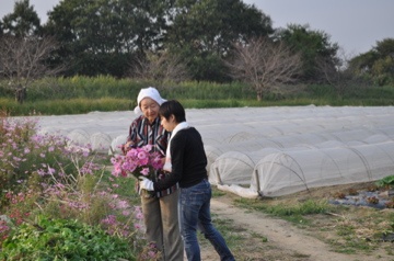 増田農園研修報告_c0130206_23284154.jpg