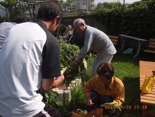 ☆園芸療法☆5月_d0163307_13432278.jpg