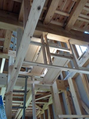 はしごはもうすぐなくなります。_a0148909_1118085.jpg