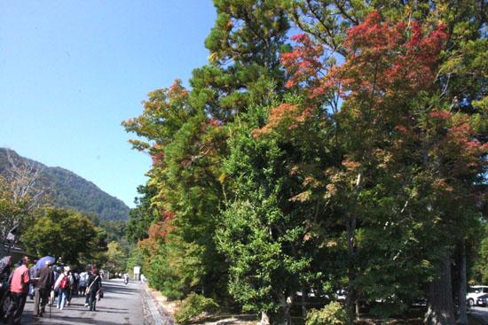 嵐山を歩く_e0048413_1505243.jpg