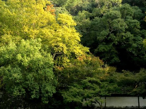 和歌山城公園散策_b0093754_23534437.jpg