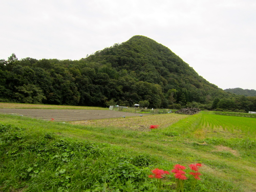 丹波篠山110km ロードトレーニング_d0174462_23321629.jpg