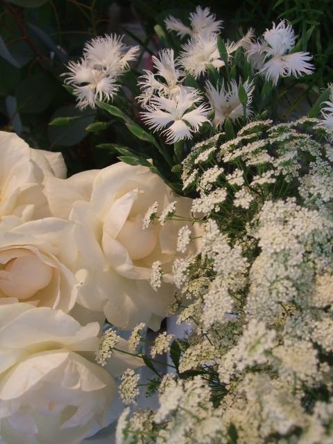 オークリーフ(秋の花まつり)_f0049672_12493918.jpg