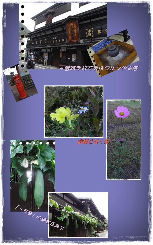 d0028304_1722787.jpg