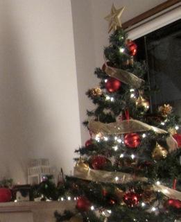 Préparatifs de Noël クリスマスの準備*1_d0170823_17351236.jpg