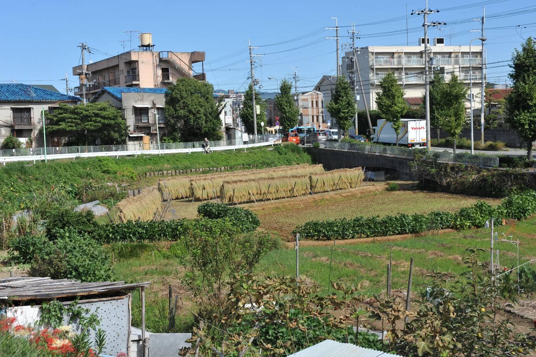 ロマンティック街道から 旧箕面池田街道へ_b0069128_10494024.jpg