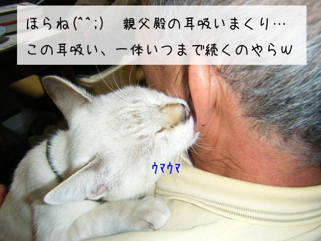f0008935_051596.jpg