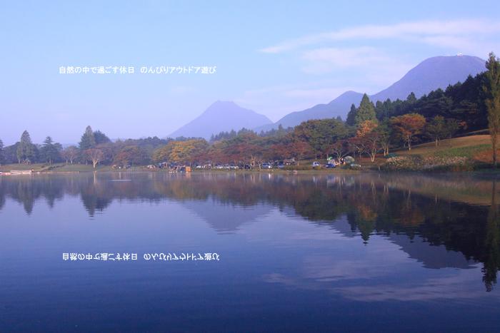 d0220663_1650057.jpg