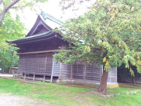 自然豊かな亀田八幡宮_b0106766_163658100.jpg