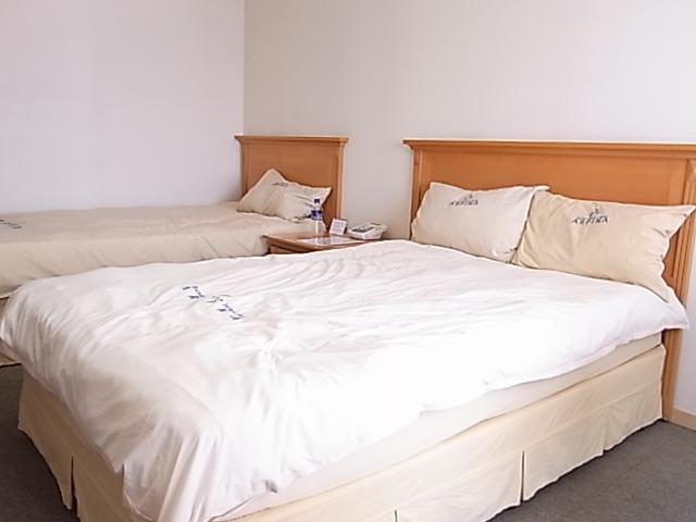 釜山 ホテル アルピナ ユースホステル_e0141982_0315465.jpg