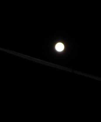 月の光_f0061394_9203449.jpg
