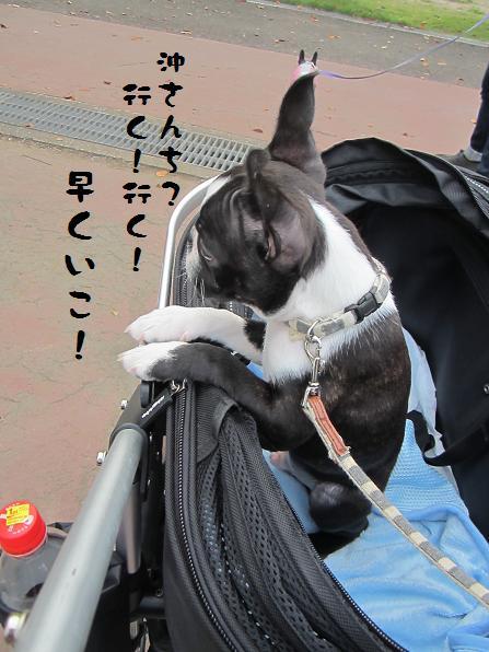 d0218999_0523681.jpg