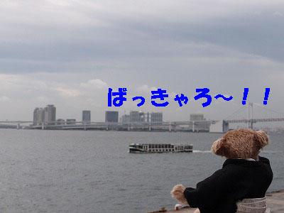 c0191646_1621781.jpg