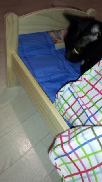 うさぎちゃんのベッド_e0114246_4471332.jpg