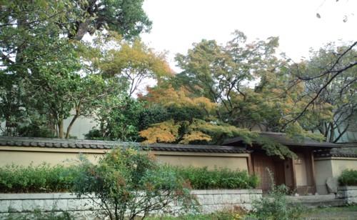 秋…深まりゆく_d0082356_1035761.jpg
