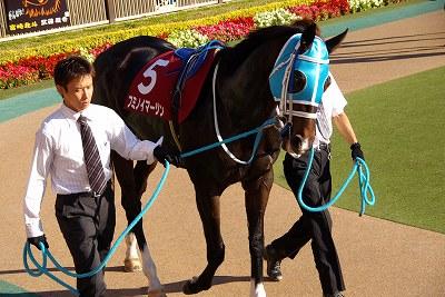 府中牝馬Sはサマー2000王者イタリアンレッドが重賞3連勝!_b0015386_23574017.jpg