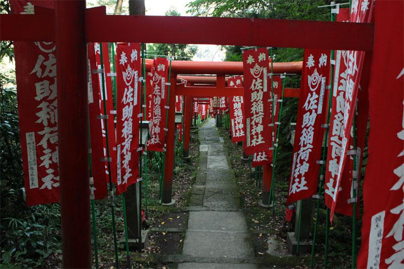 鎌倉巡り、あれこれ_d0217090_11243264.jpg