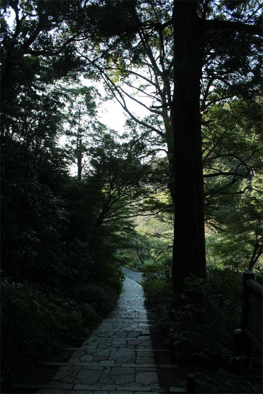 鎌倉巡り、あれこれ_d0217090_11243468.jpg