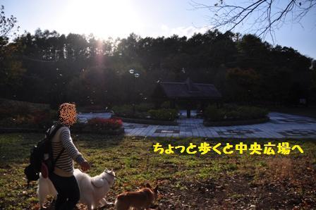 f0212597_21212557.jpg