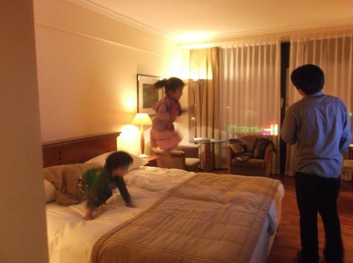 中欧への旅(9)―ホテルについて_e0123104_727983.jpg