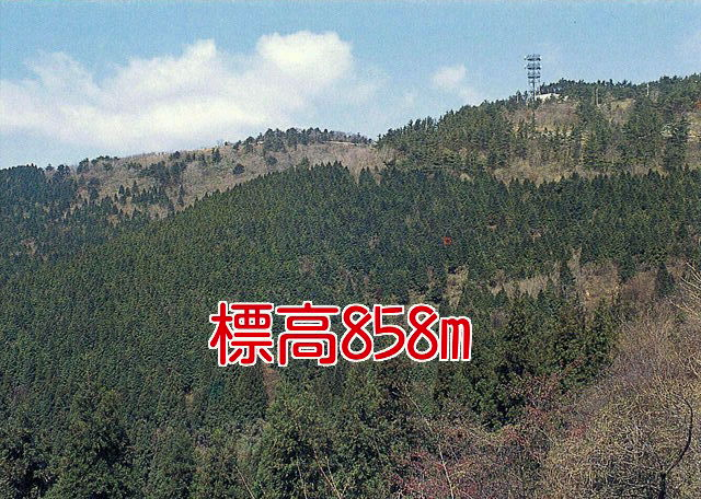 f0219810_16542453.jpg