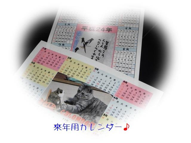 b0166327_2232280.jpg