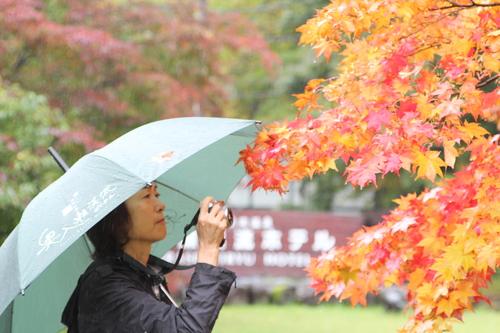 紅葉に彩られた奥入瀬でゆるかわ写真撮影会_f0237658_16504743.jpg