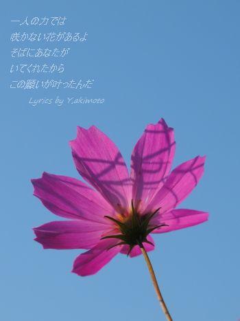 f0180065_2231679.jpg