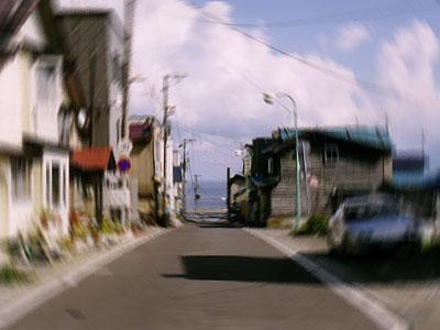 礼文島 ― 北海道_c0000166_20385446.jpg