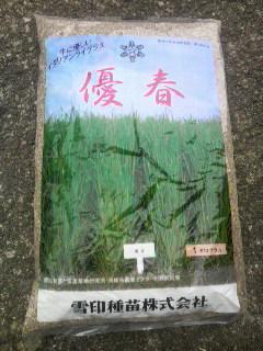 牧草の種 2_e0063268_21212912.jpg