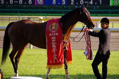 府中牝馬Sはサマー2000王者イタリアンレッドが重賞3連勝!_b0015386_001319.jpg