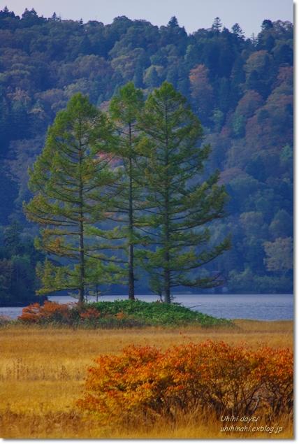 秋の尾瀬沼へ・・・_f0179404_21415919.jpg