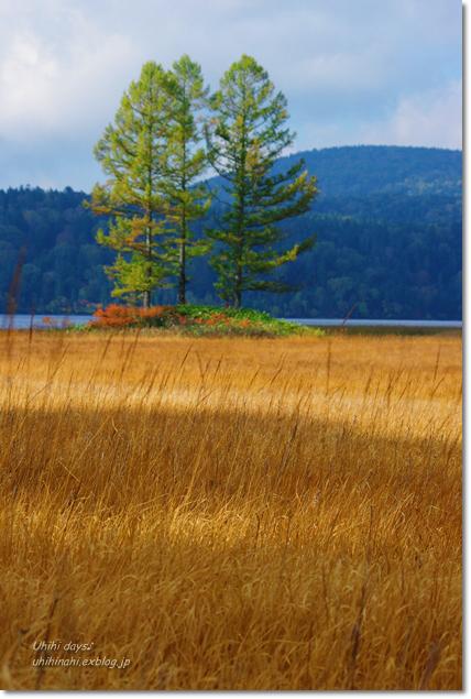 秋の尾瀬沼へ・・・_f0179404_21434755.jpg