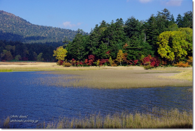 秋の尾瀬沼へ・・・_f0179404_21441588.jpg